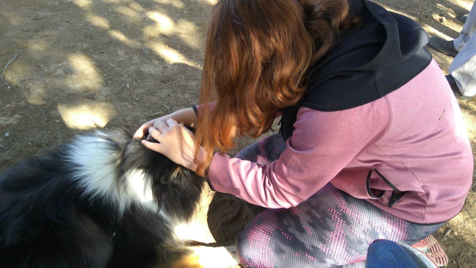 כלבנות טיפולית